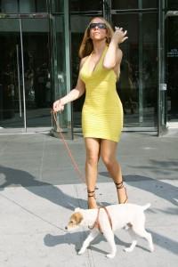 Mariah Carey with her dog leaving Hotel Gansevoort in Soho New York City, USA - 31.05.06 Credit: POP WENN